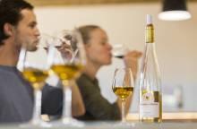 Weingut Domaine de Coyeux