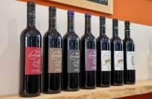 Weingut Domaine de la Camarette