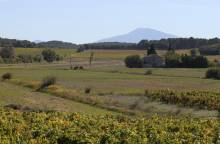 Cycle route - the Massif d'Uchaux by bike