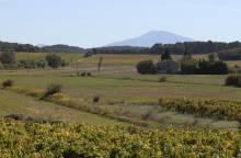 Circuit Vélo - Tour du Massif d'Uchaux à (...)