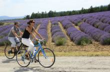 The Plateau de Sault by bike