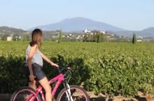 Touring the Côtes du Rhône by bike