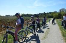 Bike ride into the vineyards of (...)