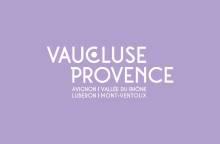 Commémoration de la Libération d'Avignon et Feu d'artifice - 75e anniversaire