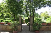 Die Gärten des Harmas von Jean-Henri Fabre