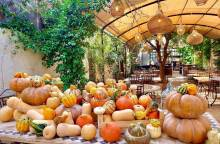 Cookery Workshop at Maison de la Tour