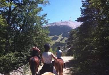 Les Crinières du Mont Ventoux