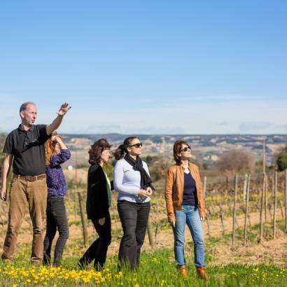 Discovery workshop: visit of the estate and tasting