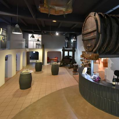 Food and wine pairings at the Wine Museum - Maison Brotte