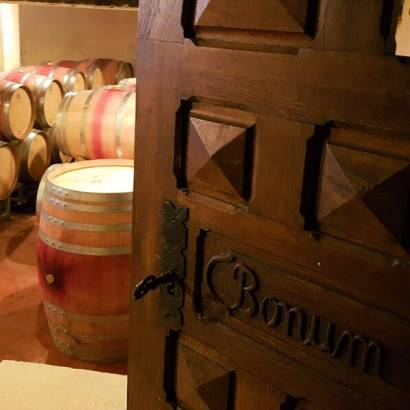 Tasting workshops at the estate with cellar visit - Gigondas