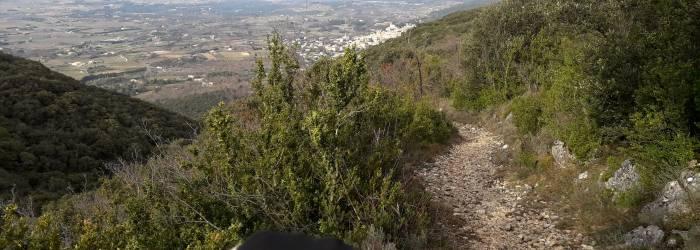 VTT n°35 - Forêt des Cèdres et Tour Philippe