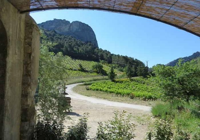 Domaine de Cassan Provence Esclausels