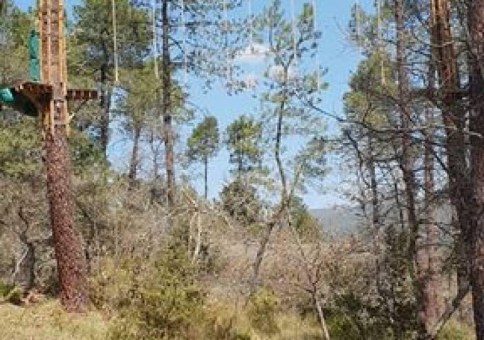 Treetop adventure park 'Colorado Aventures'